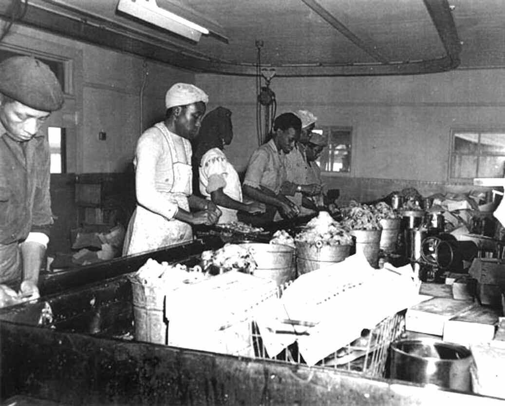 Seafood Workers. East Savannah and nearby town of Thunderbolt was home to several seafood processing companies, as well as fisherman, shrimpers and oystermen. Courtesy of Lena Ambos Meeks and the Thunderbolt Museum Society.